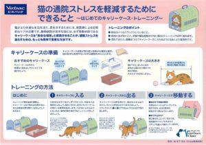 猫の通院ストレスを軽減するためにできること