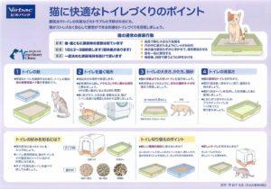 猫に快適なトイレづくりのポイント