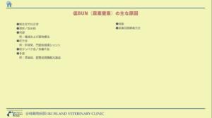 低BUN(尿素窒素)血症の原因