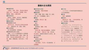 腹痛の鑑別診断リスト