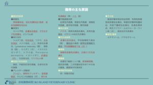 犬猫掻痒鑑別診断リスト